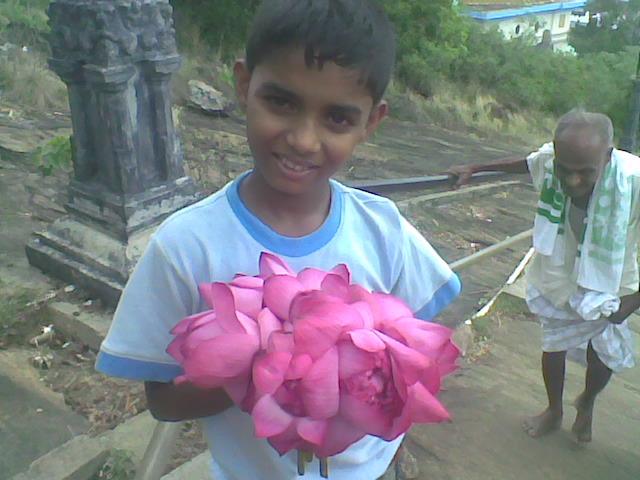 Carrying Lotus Flowers