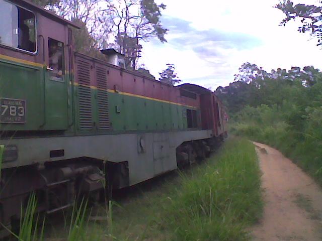 Passing Train at Ella